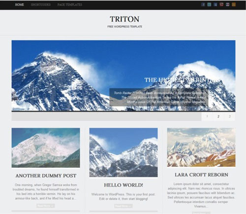 triton lite wp slider homepage