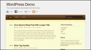 wptemplate13
